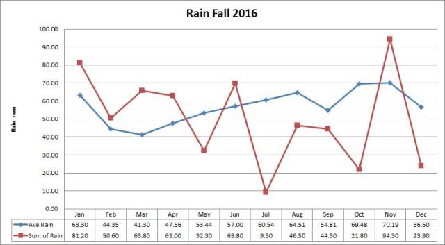 rain_2016